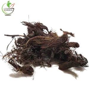 خواص درمانی ریشه سنبل الطیب - اطلس گیاهان دارویی
