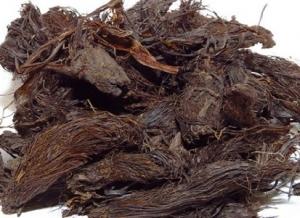 عکس ریشه سنبل الطیب