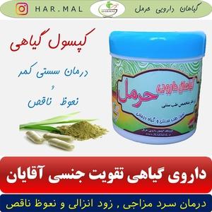 داروی گیاهی سستی کمر - داروی گیاهی تقویت جنسی آقایان (3)