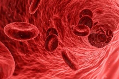 داروی گیاهی غلظت خون ، درمان گیاهی غلظت خون