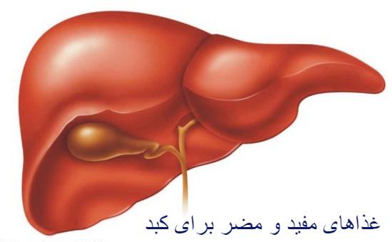 غذاهای مفید و مضر برای کبد - آیا کبد مرکز غم و اندوه است - دلایل کبد چرب